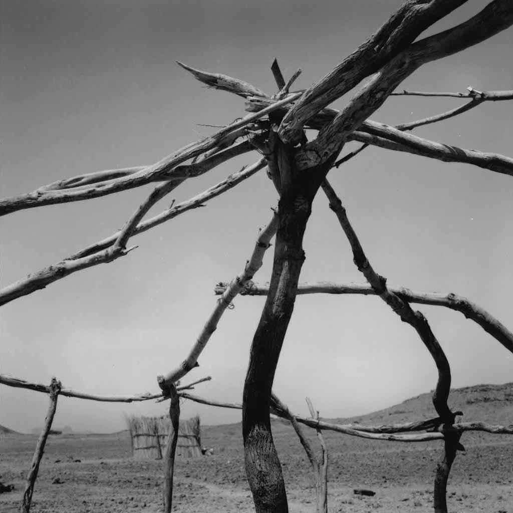 La charpente de l'akabar (hutte en roseaux) que Entayent et les hommes de son village de Touaregs sédentaires ont commencé à construire pour le fils aîné d'Entayent puisqu'il se marie. Village d'Ezarnen, Tassili du Hoggar, 1993